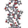 生コラーゲンとコラーゲンの違い?