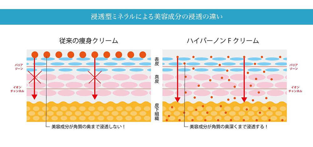 浸透型ミネラルによる美容成分の浸透の違い